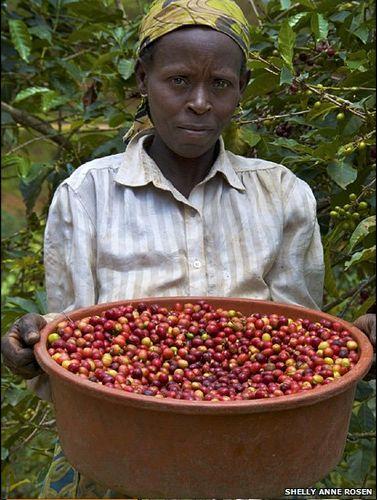 africancoffee2